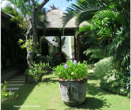Villa Jasmine 3